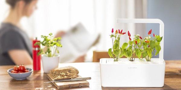 review of kickstarter funded click and grow smart garden. Black Bedroom Furniture Sets. Home Design Ideas